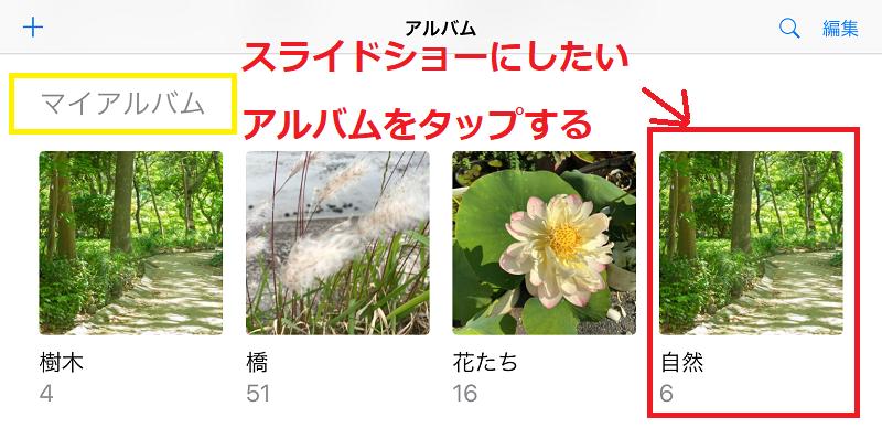 13マイアルバム